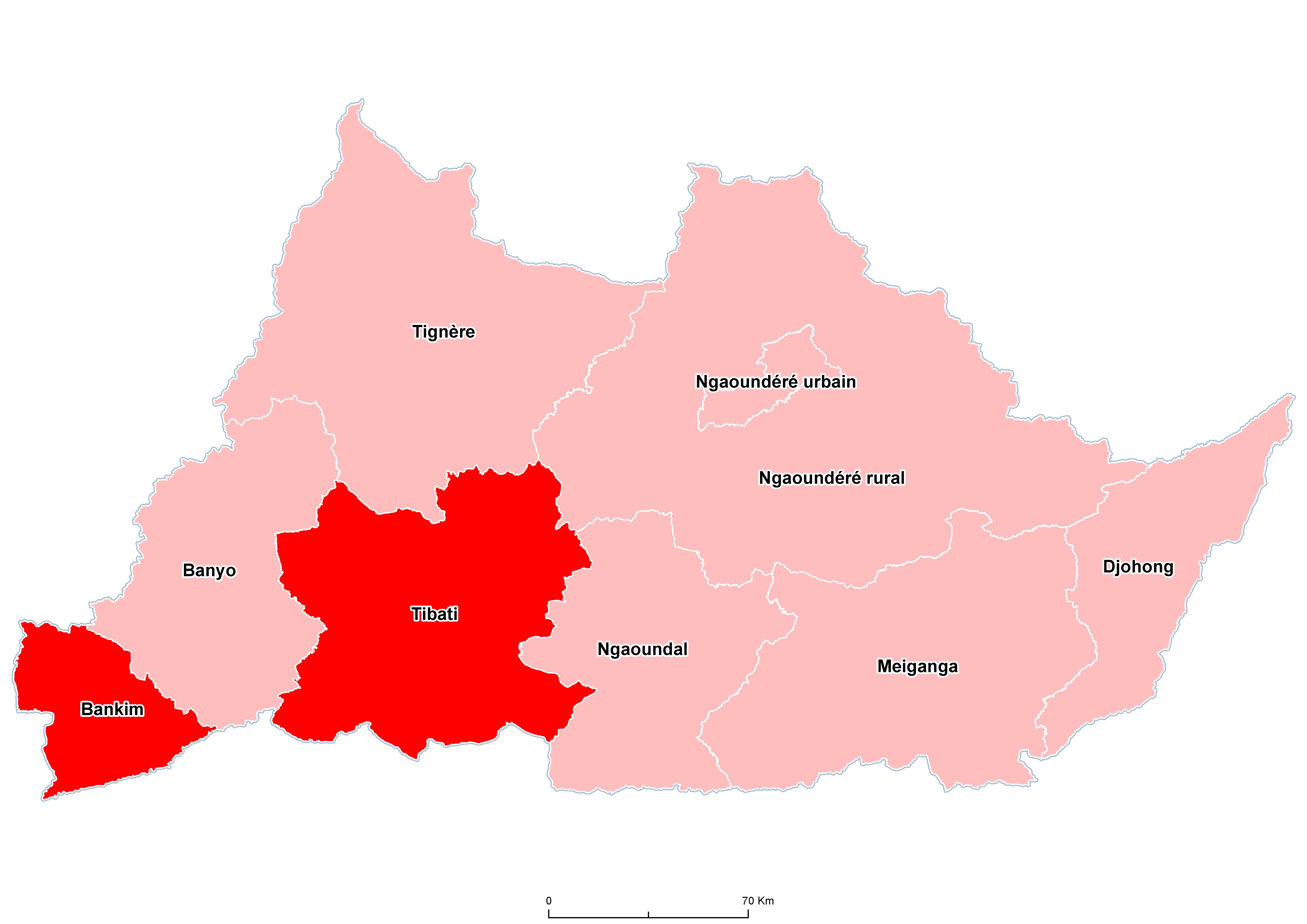 Adamaoua Mean STH Prevalence 20100001