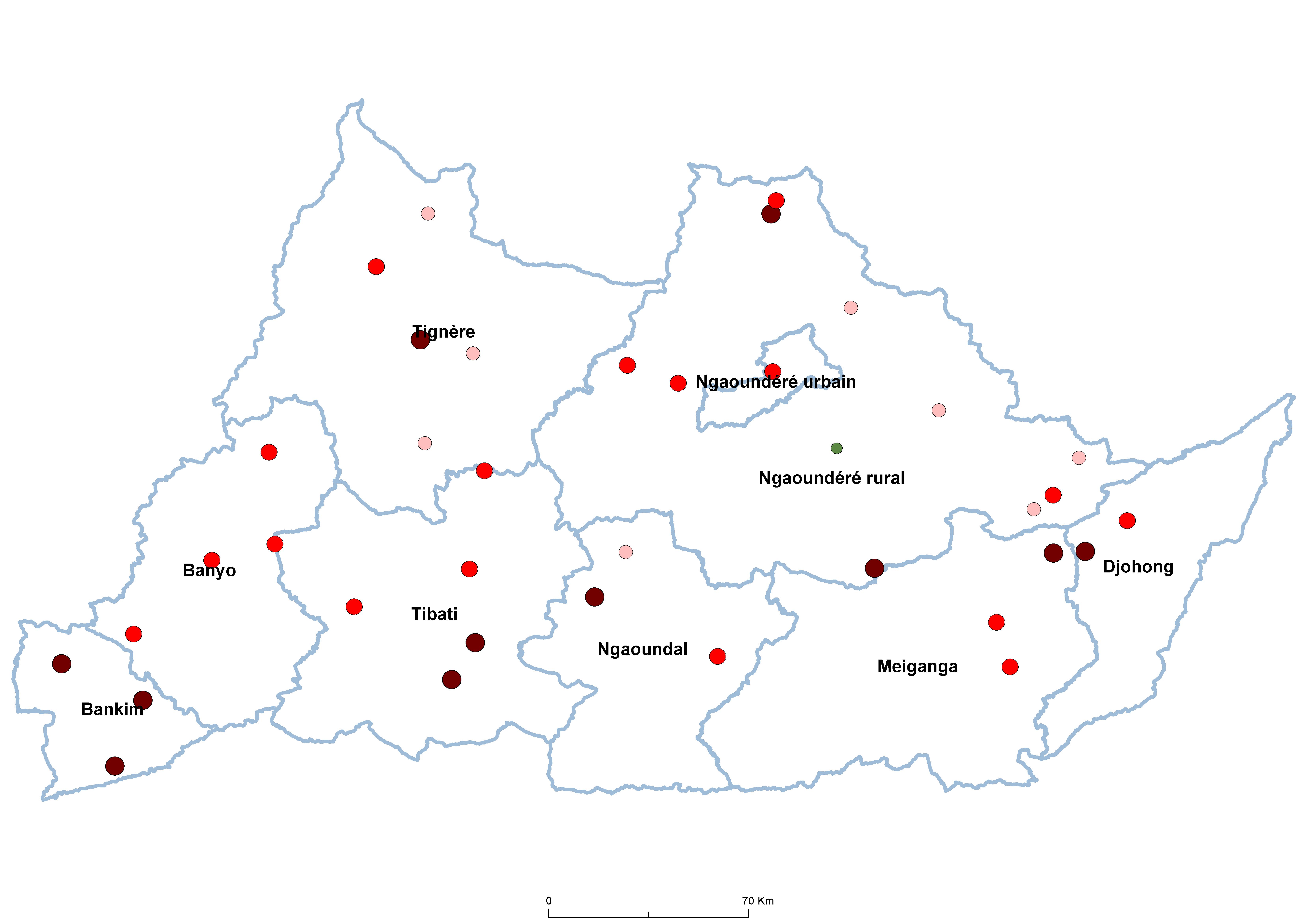 Adamaoua STH Prevalence by school 19850001