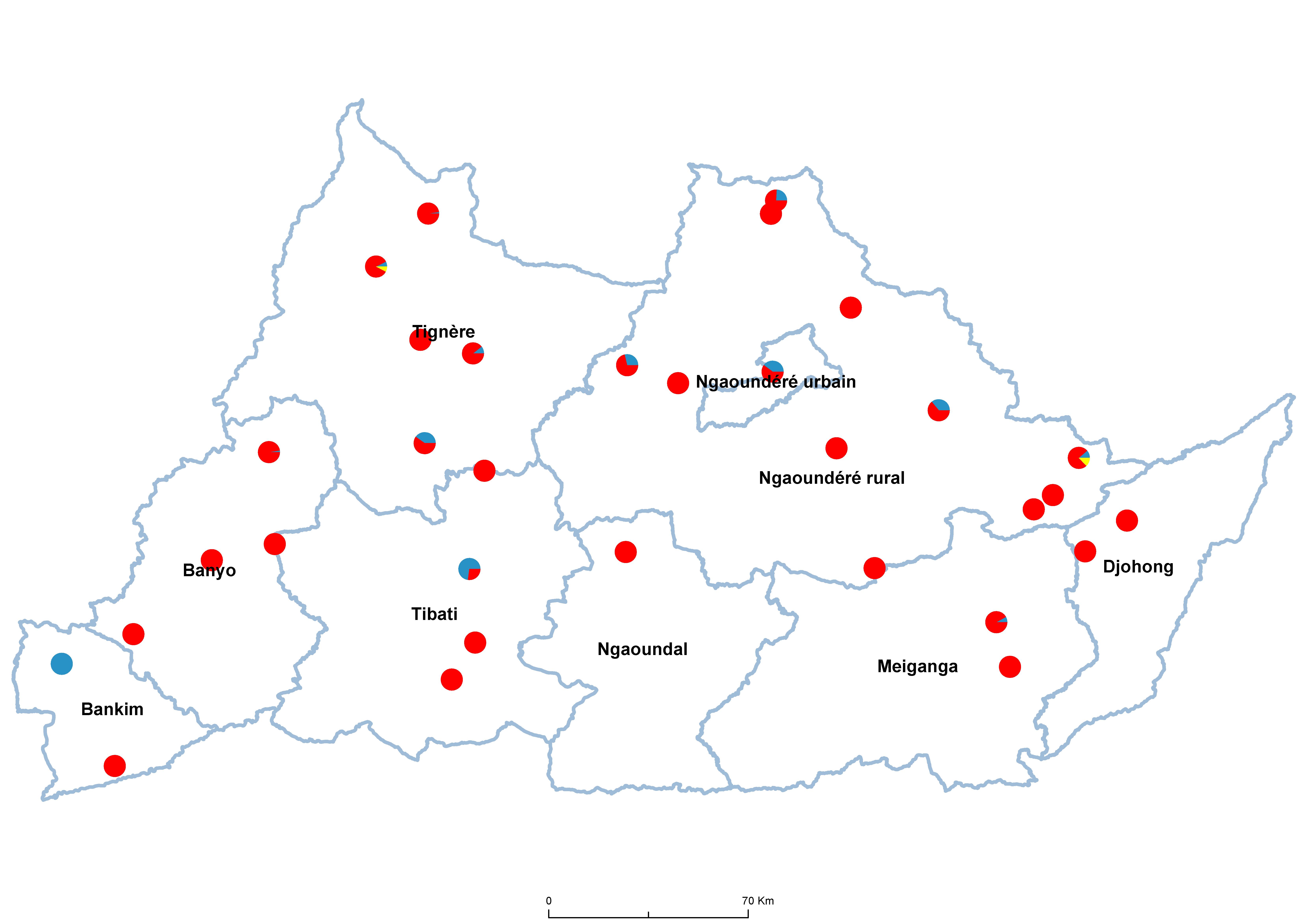 Adamaoua Schistosomiasis species 19850001