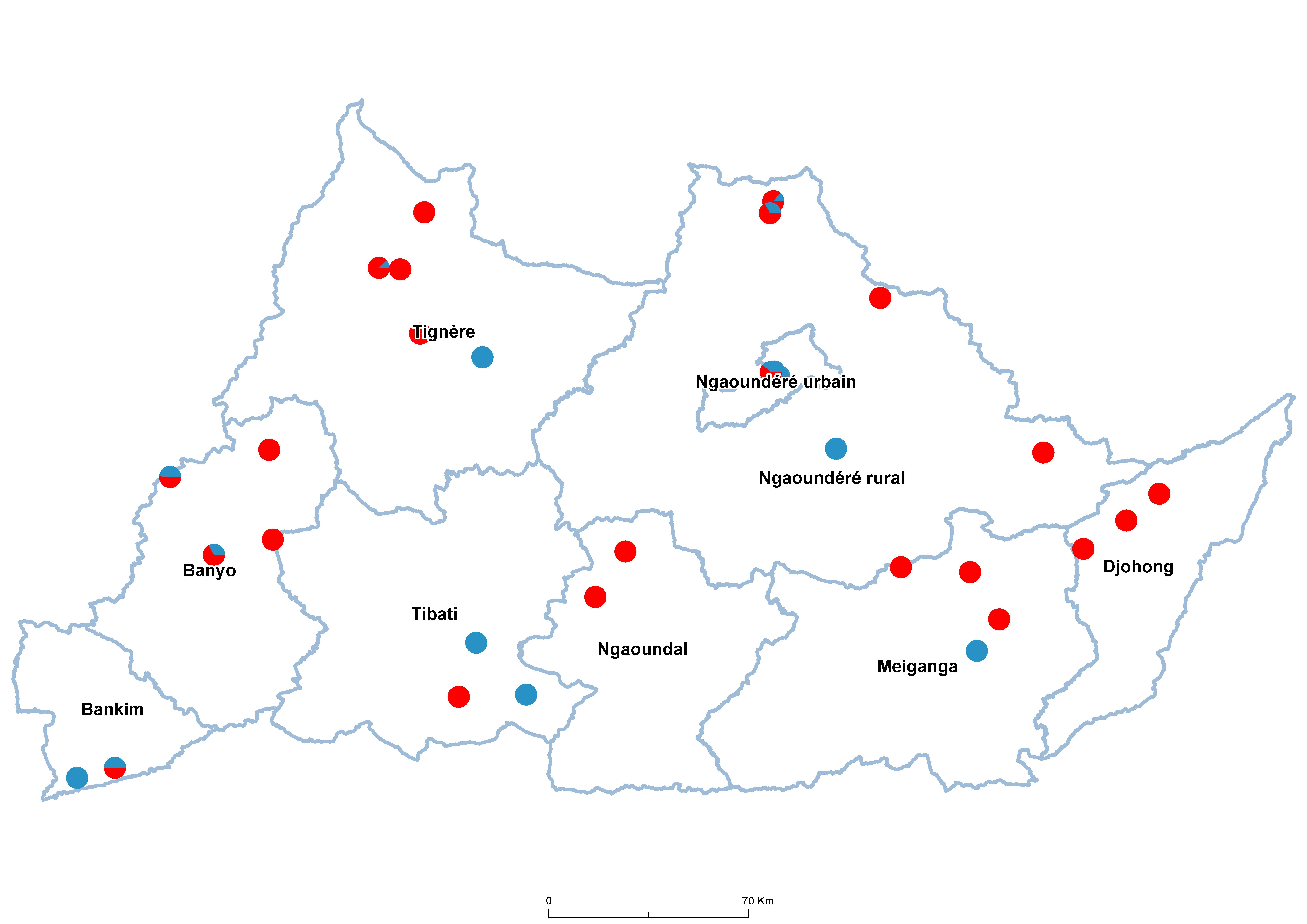 Adamaoua Schistosomiasis species 20100001