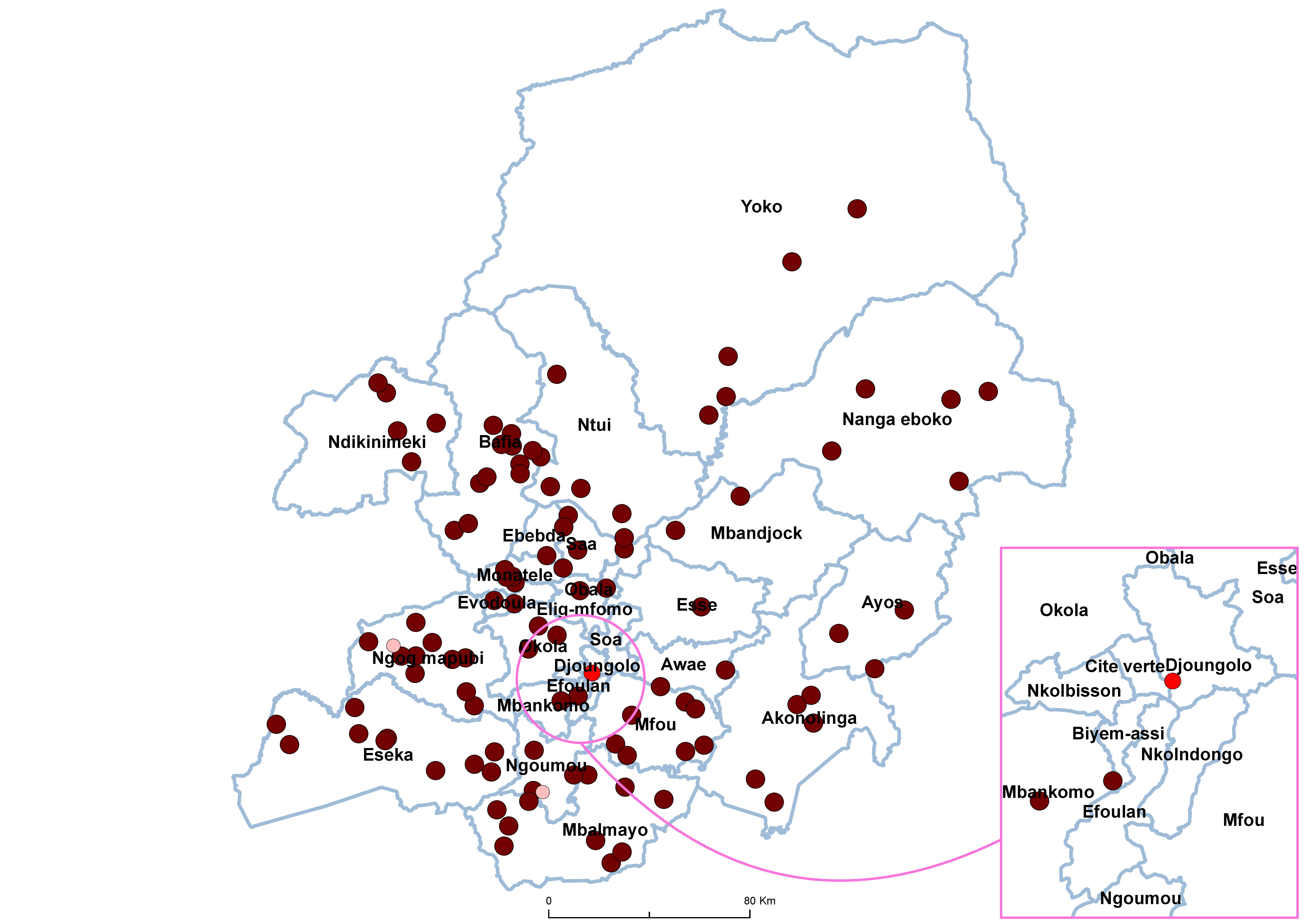 Centre STH Prevalence by school 19850001