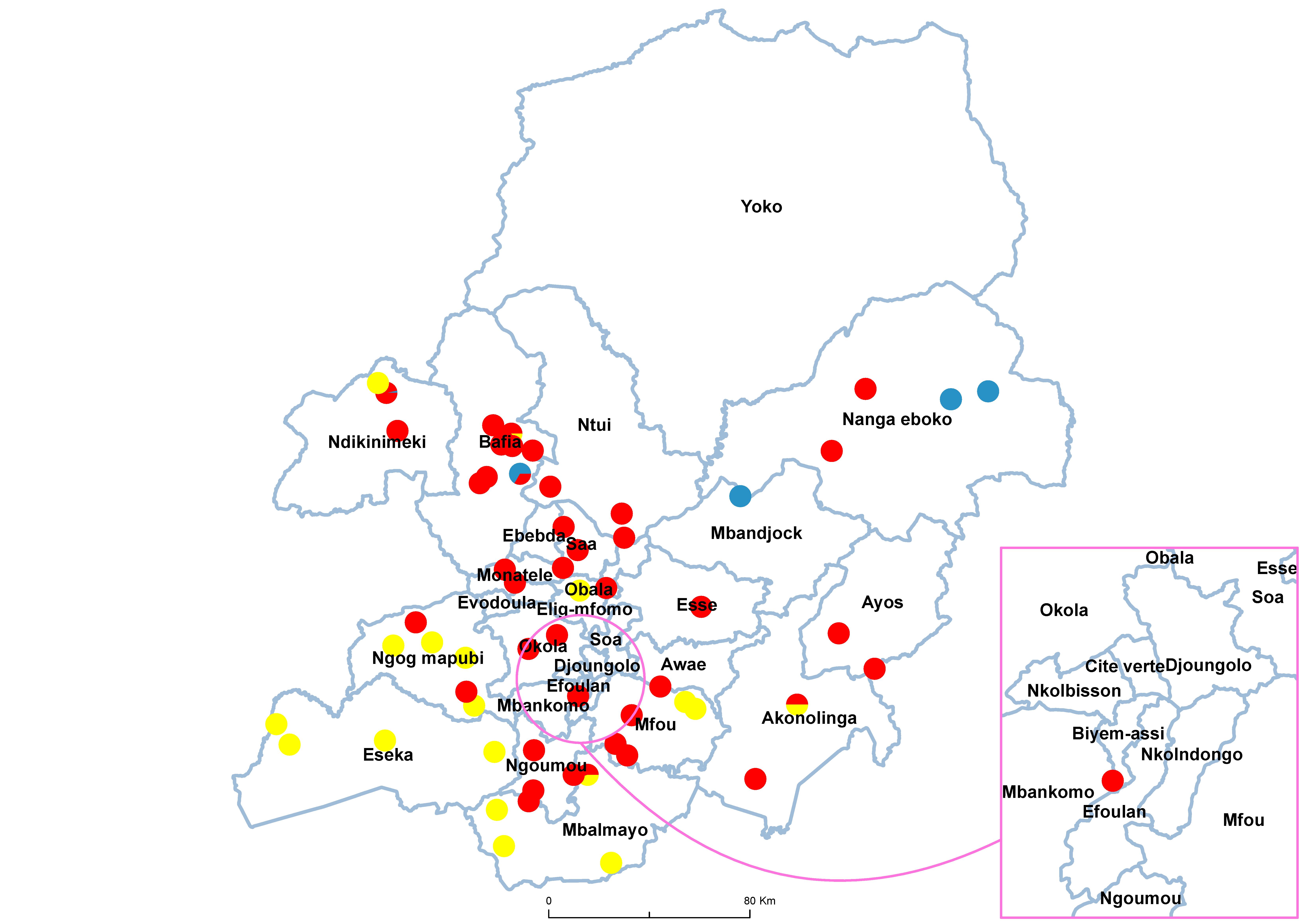Centre Schistosomiasis species 19850001