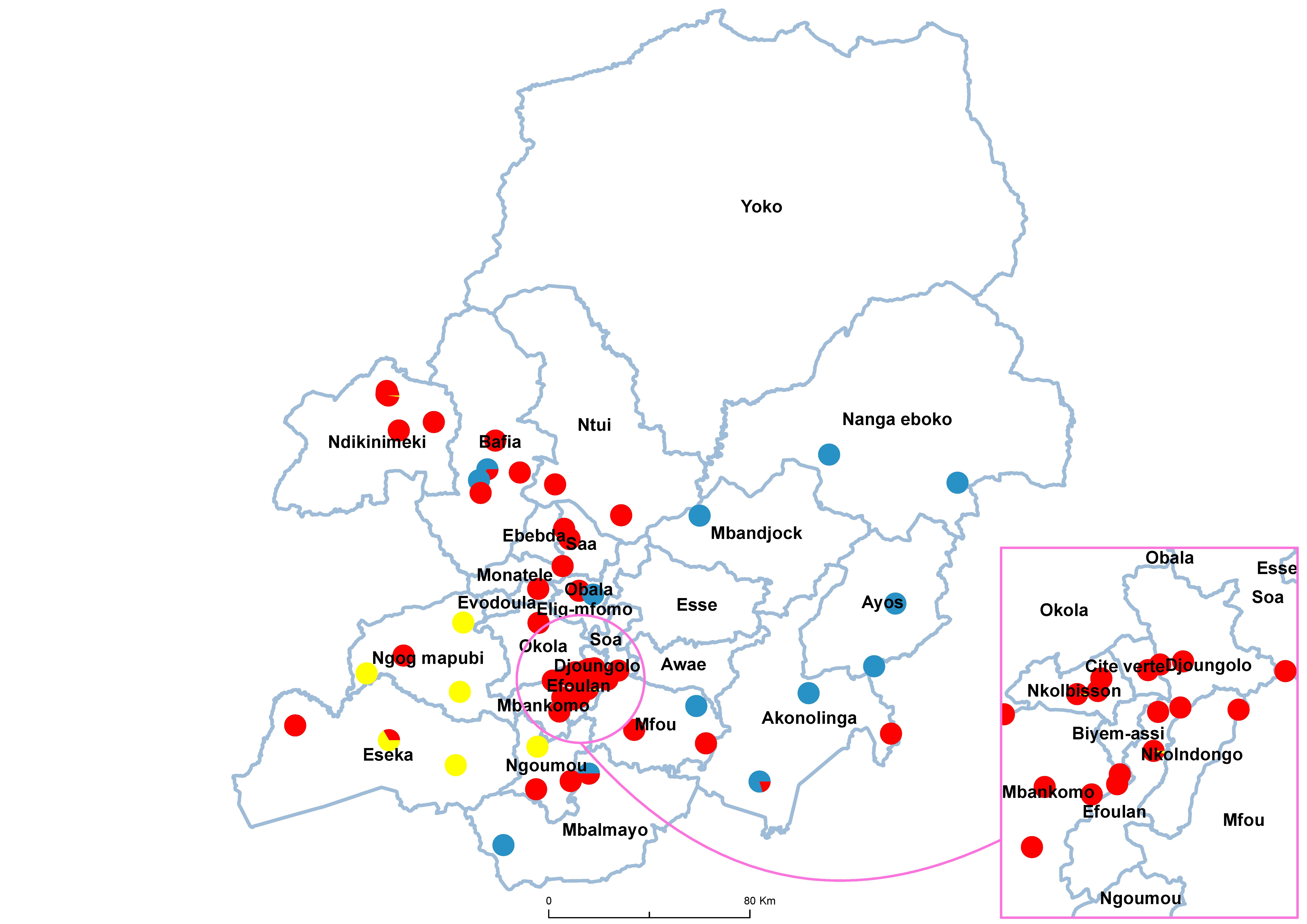 Centre Schistosomiasis species 20100001