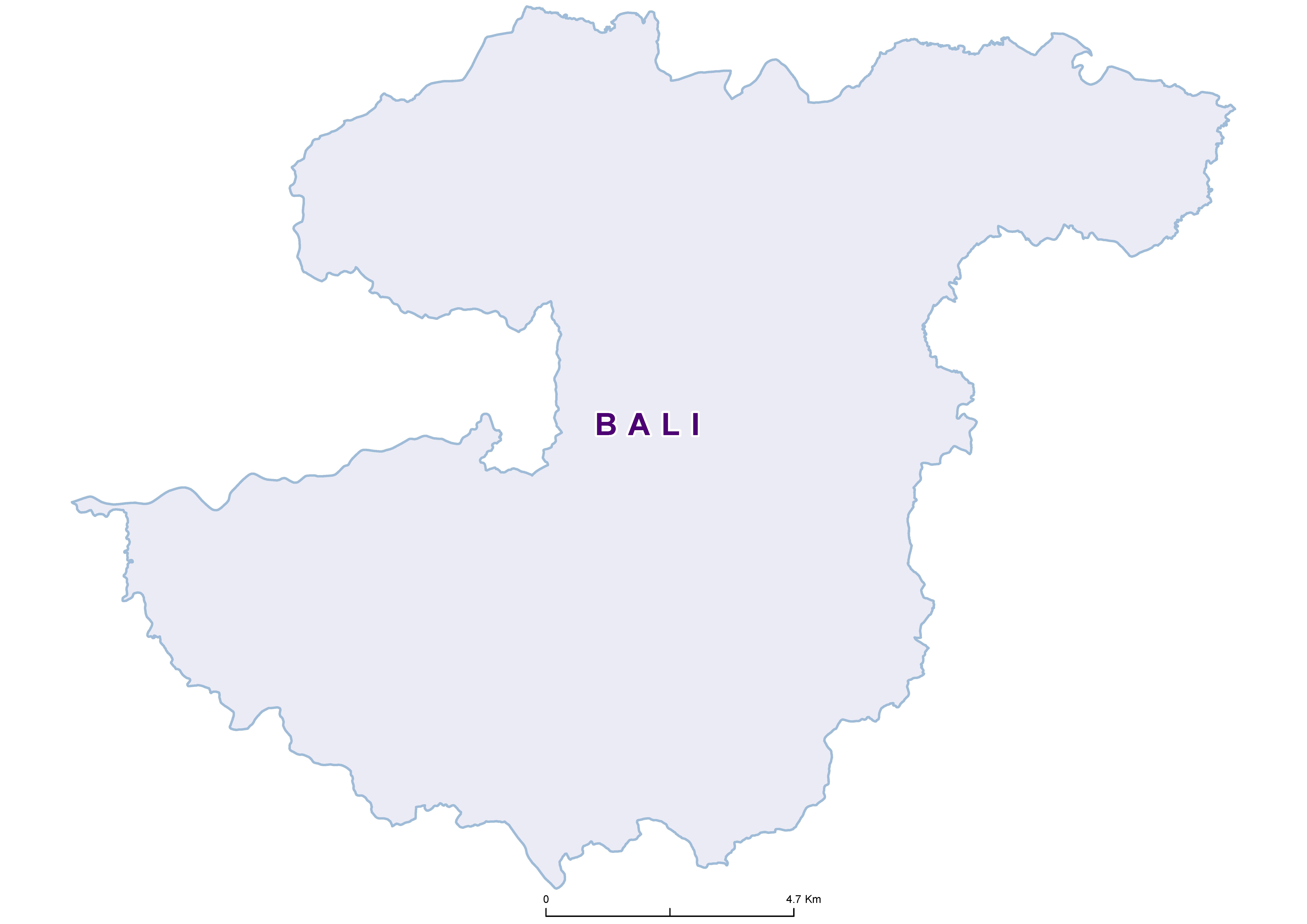 Bali Max STH 20180001