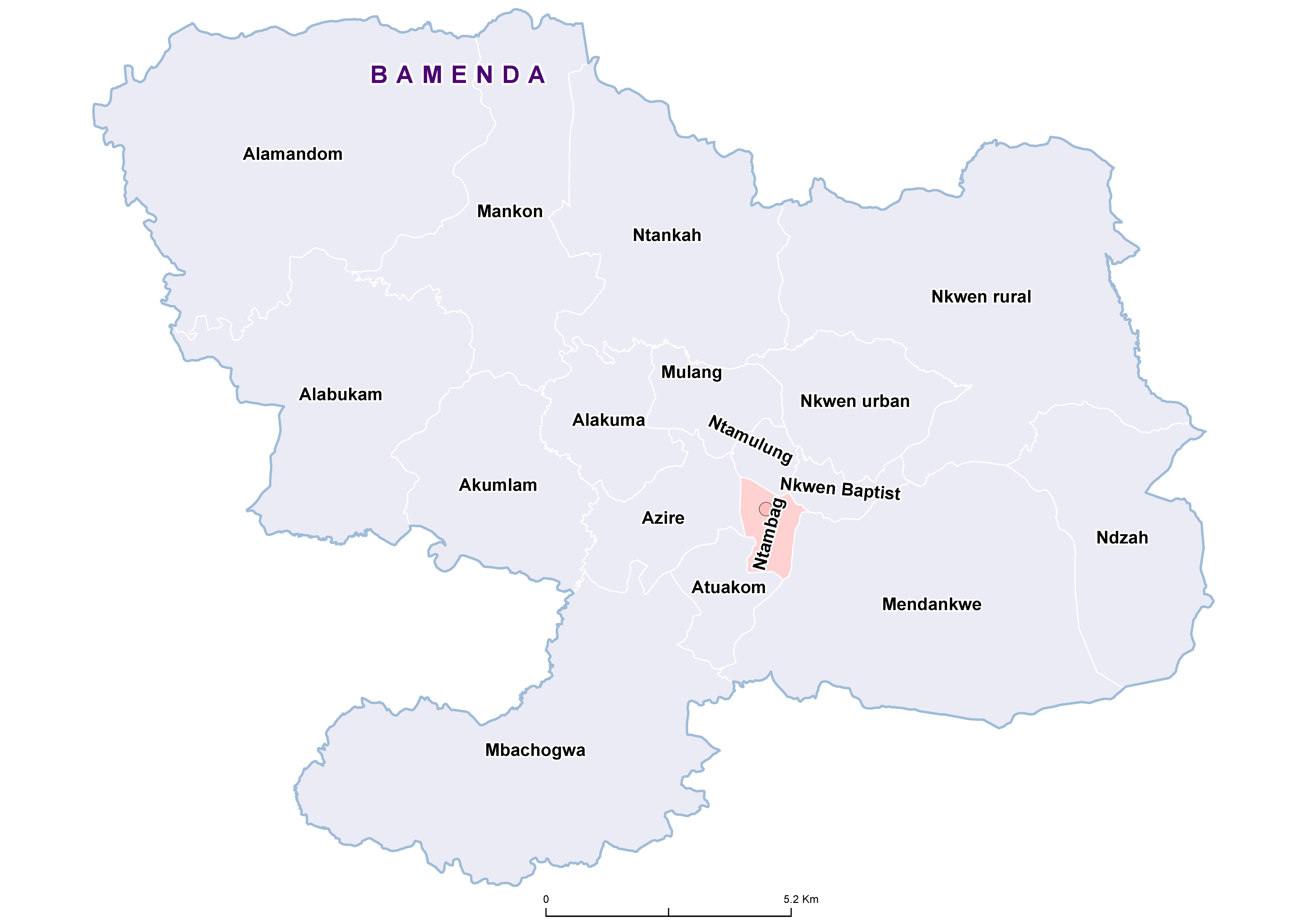 Bamenda STH 20100001