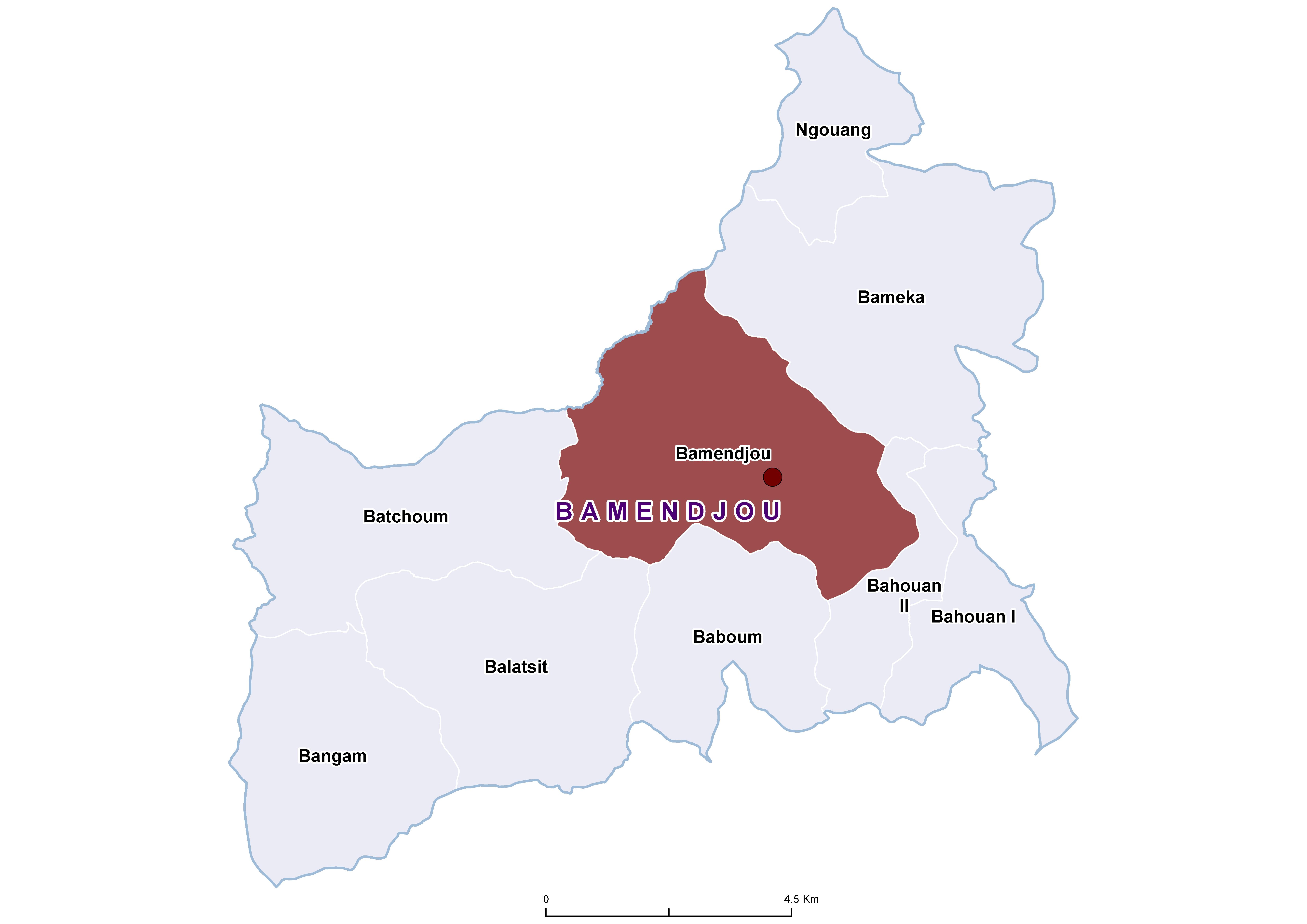 Bamendjou STH 19850001