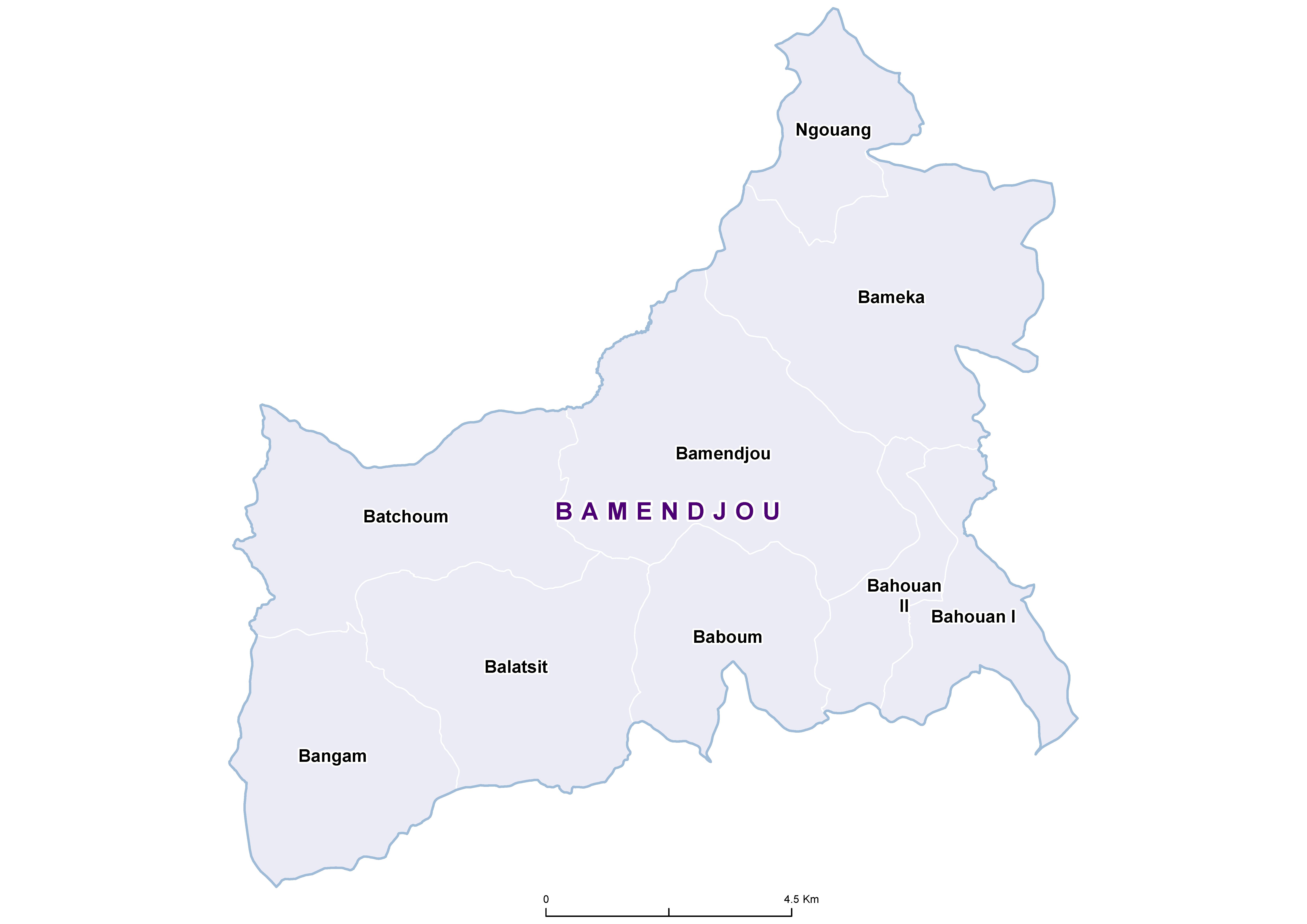 Bamendjou STH 20100001