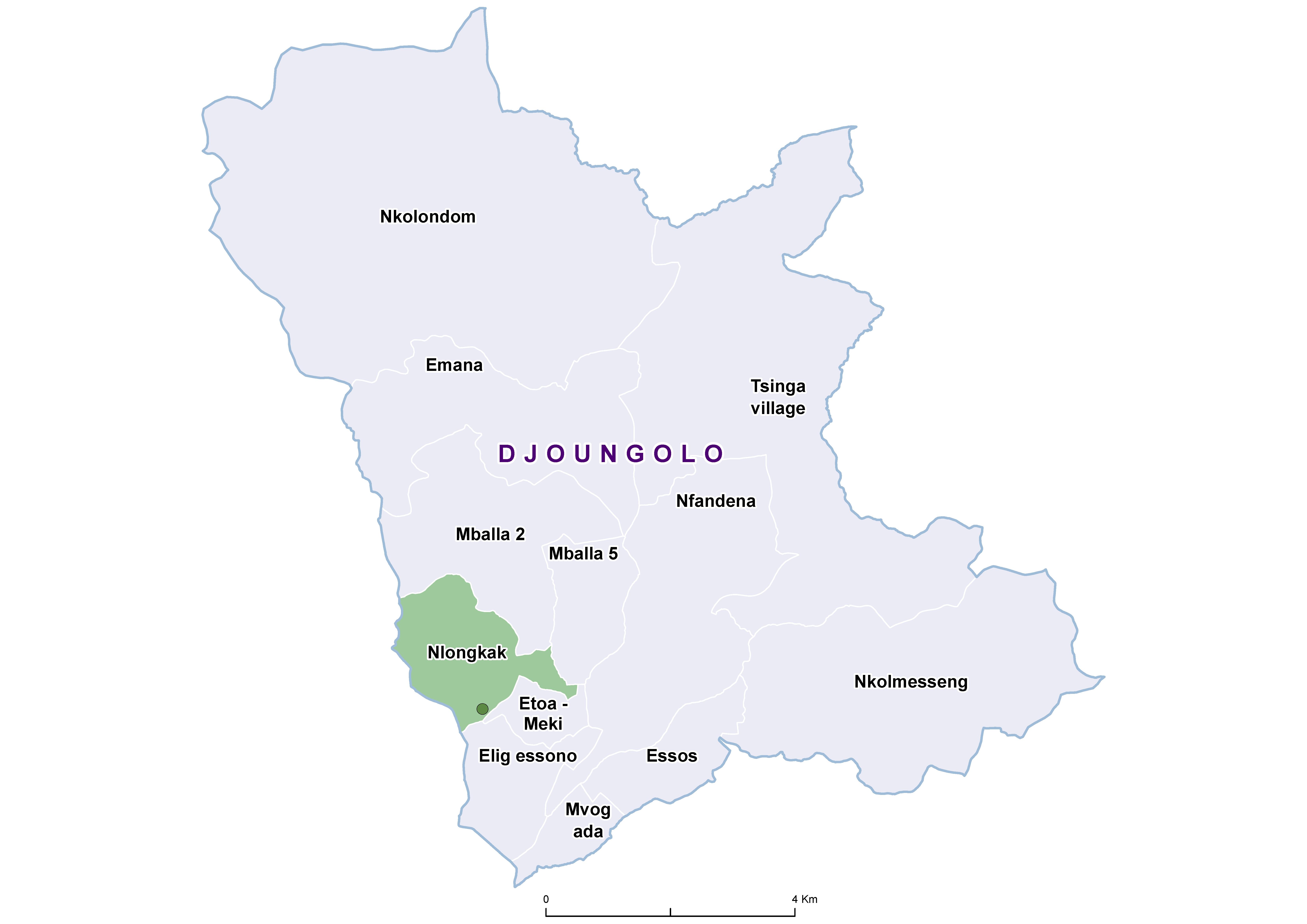 Djoungolo SCH 19850001