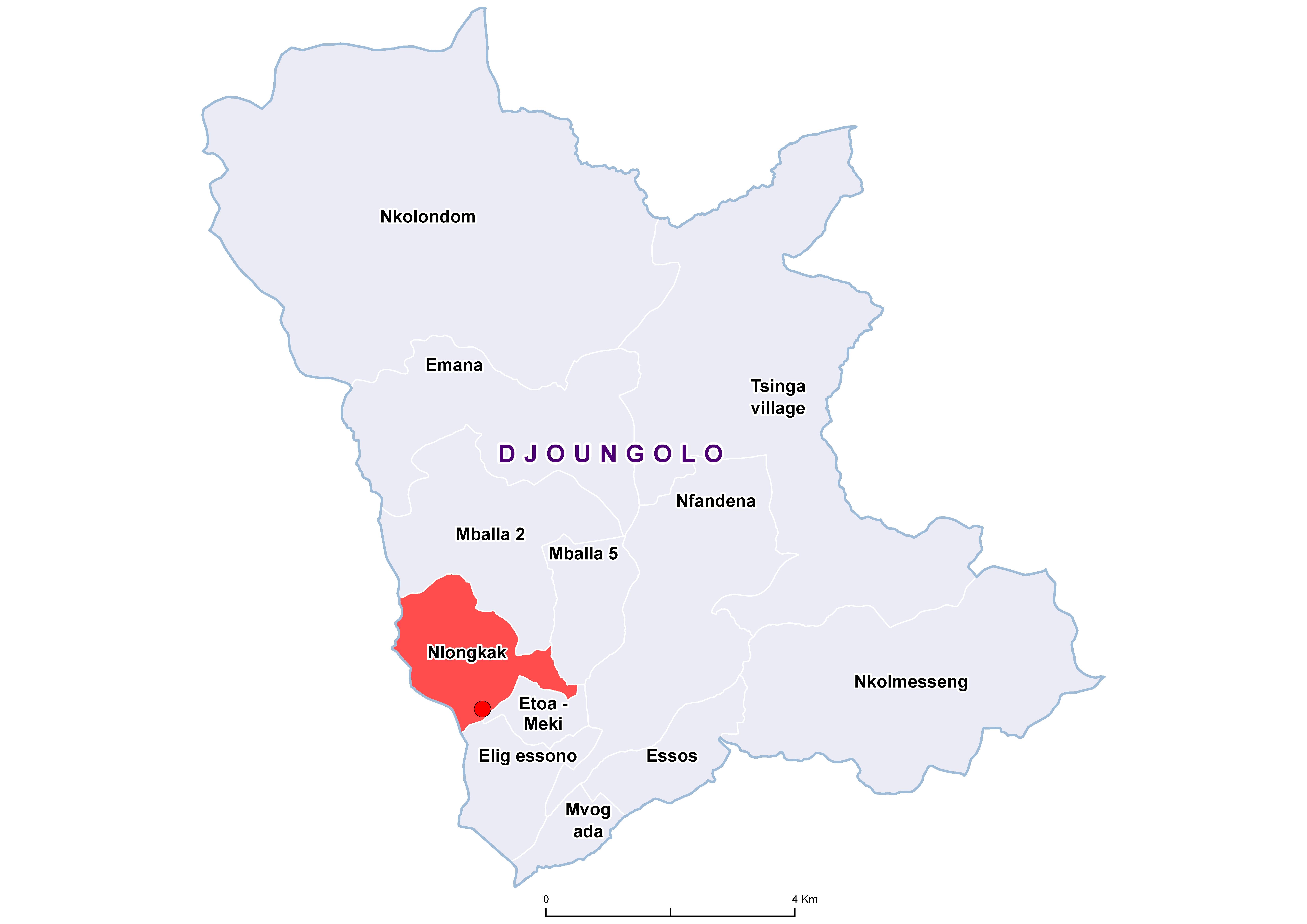 Djoungolo STH 19850001
