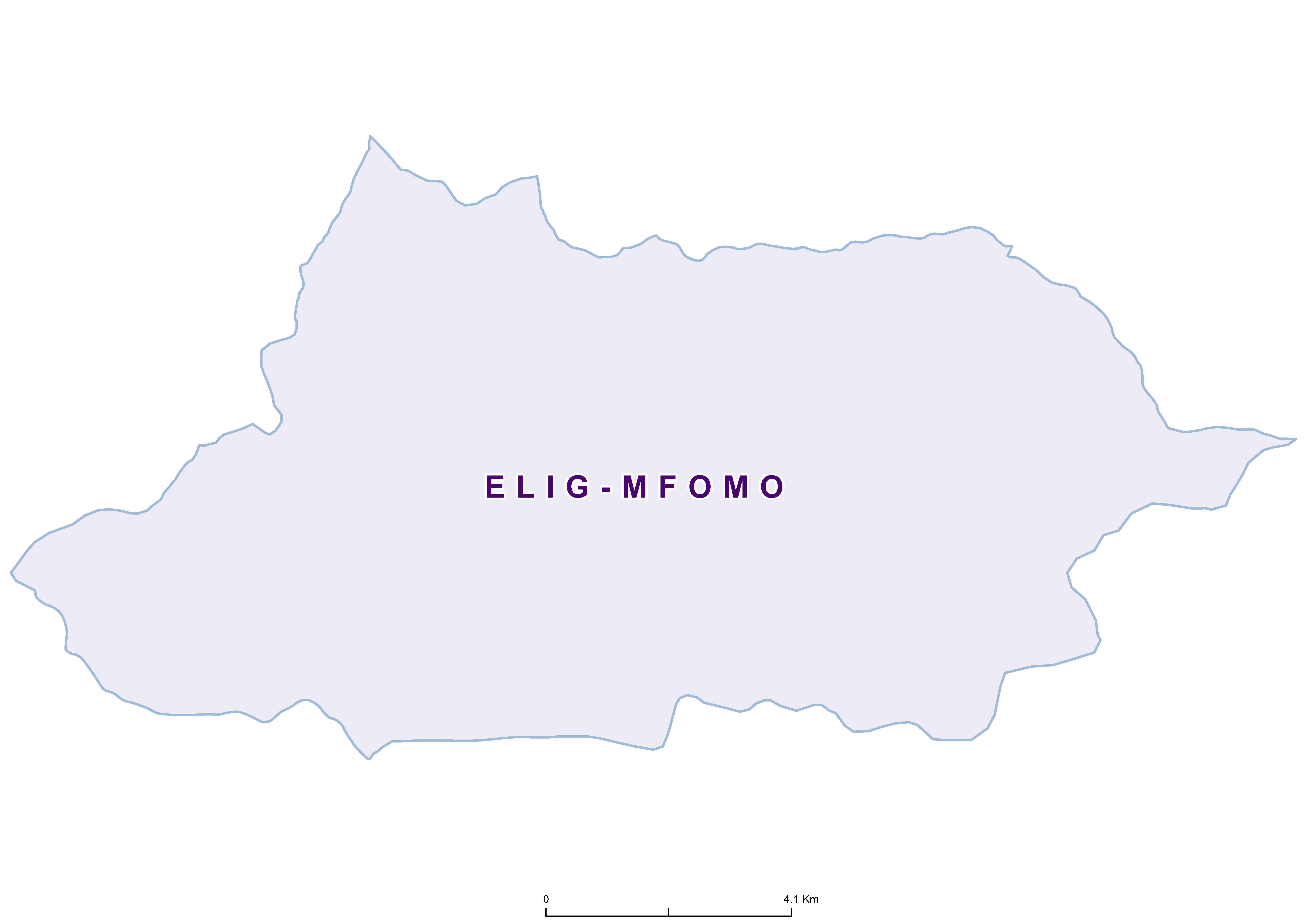 Elig-mfomo Max STH 19850001