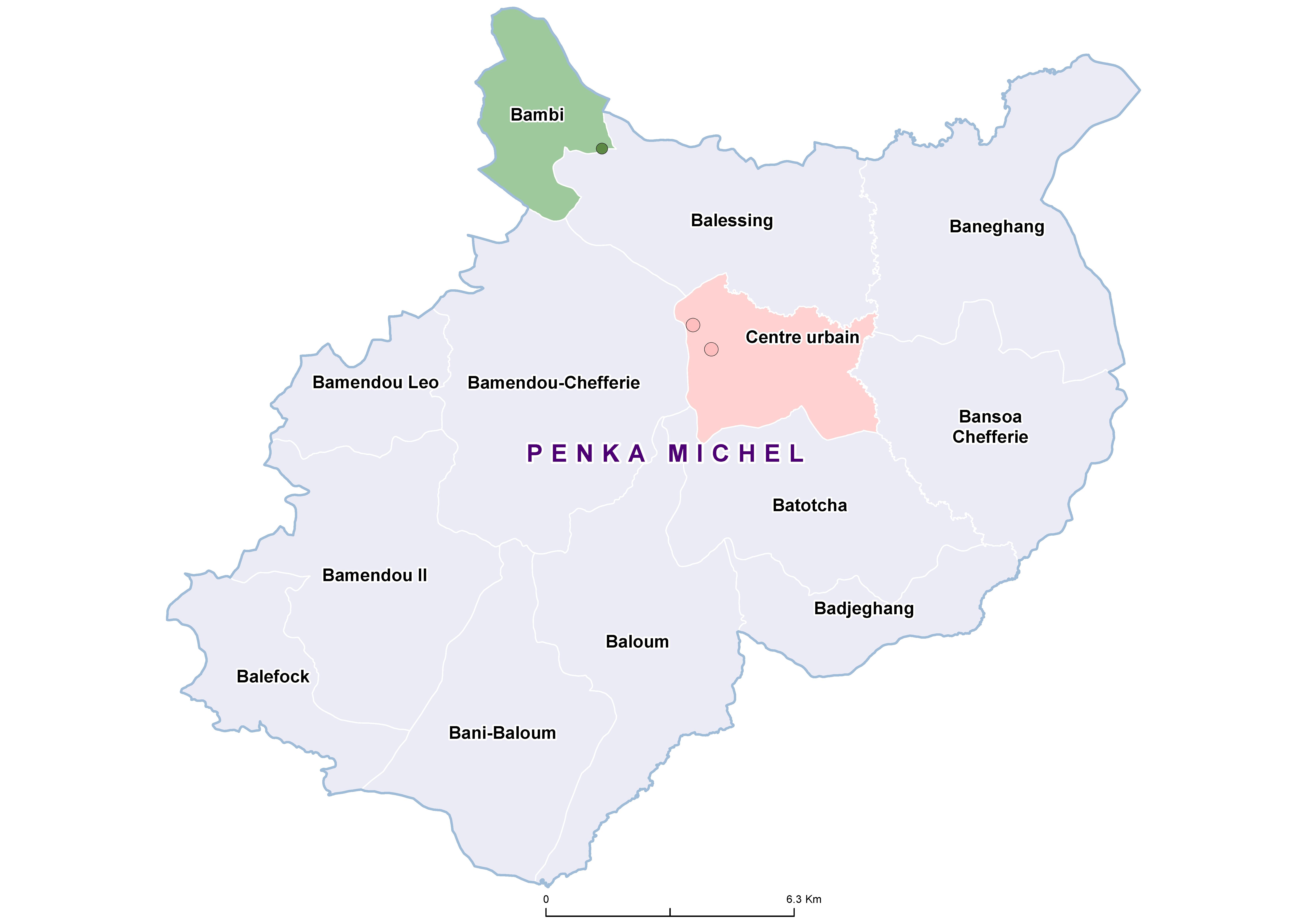 Penka Michel SCH 19850001